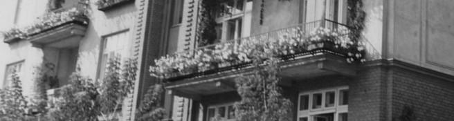 Zdjęcie do artykułu: Ukwiecajcie Wasze okna i balkony!