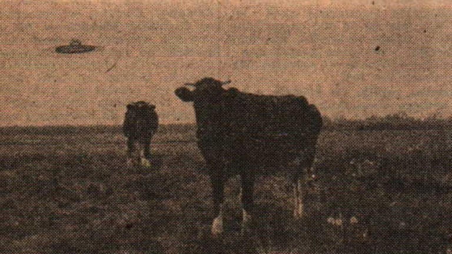 Zdjęcie dla kartki: Lądowanie UFO na Czerniakowie