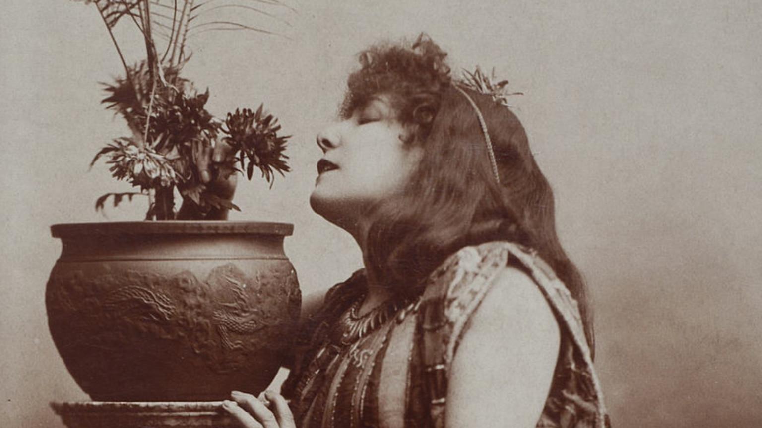 Zdjęcie dla kartki: Cykl występów Sary Bernhardt