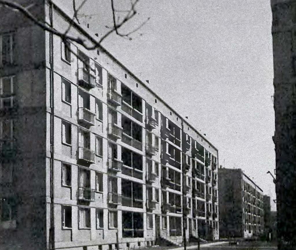 Zdjęcie dla kartki: Pierwsi lokatorzy